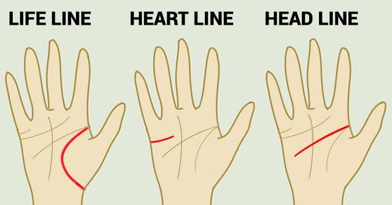 Fun Test: This Is What the Heart, Head, and Life Lines on Your Palm Reveal About Your Personality