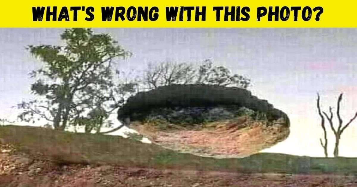This Is A REAL Photo, But Most People Can't Figure Out What's Wrong! Can You?