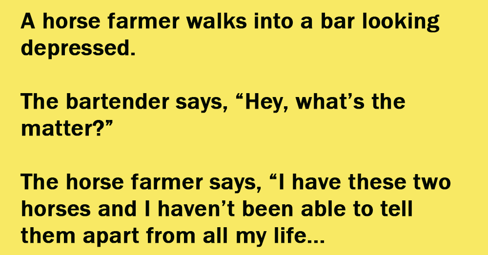 A Horse Farmer Walks Into A Bar Looking Depressed.